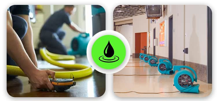 Best Flood Damage Restoration St Kilda