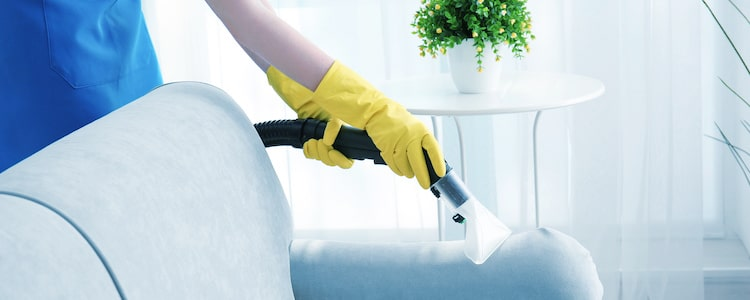 Best Upholstery Cleaning St Kilda